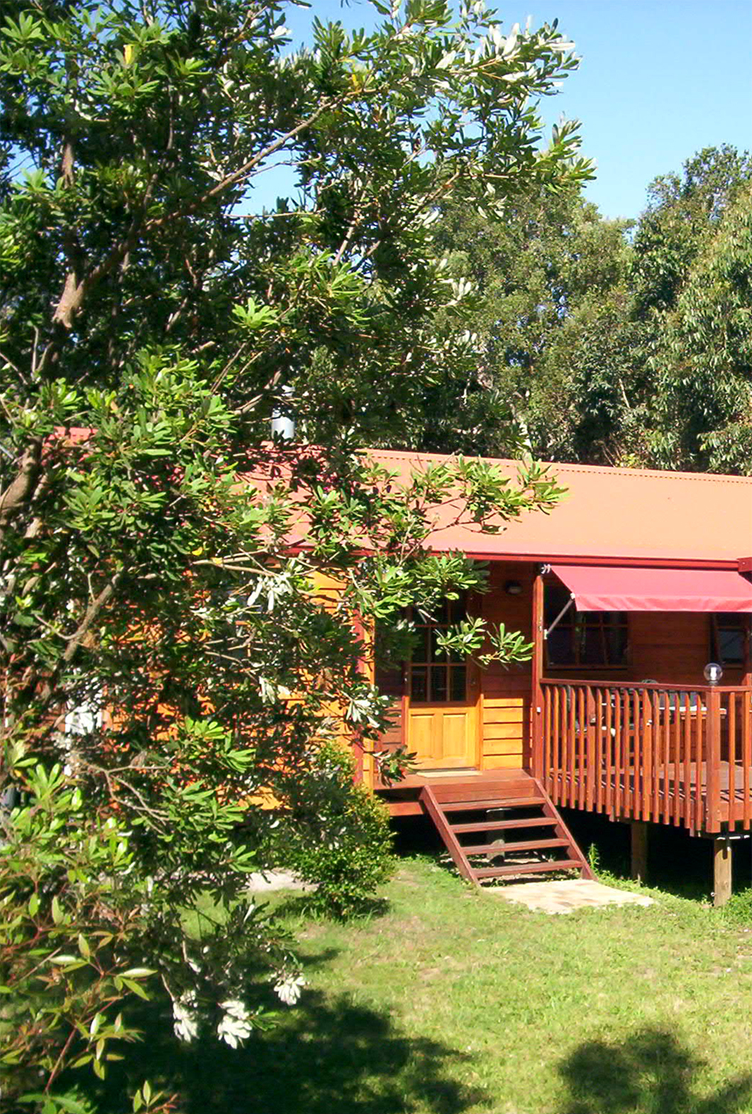 Melaleuca Seaside Retreat - Banksia Cottage Peek Through Trees
