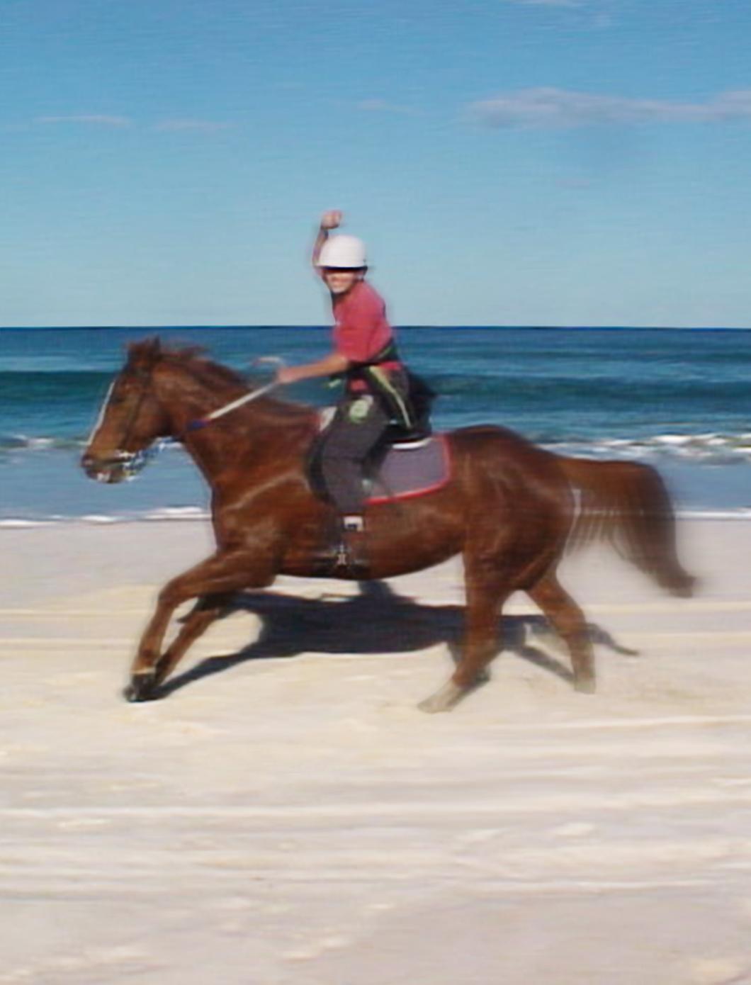 Melaleuca Seaside Retreat - Horse and Rider at the Beach