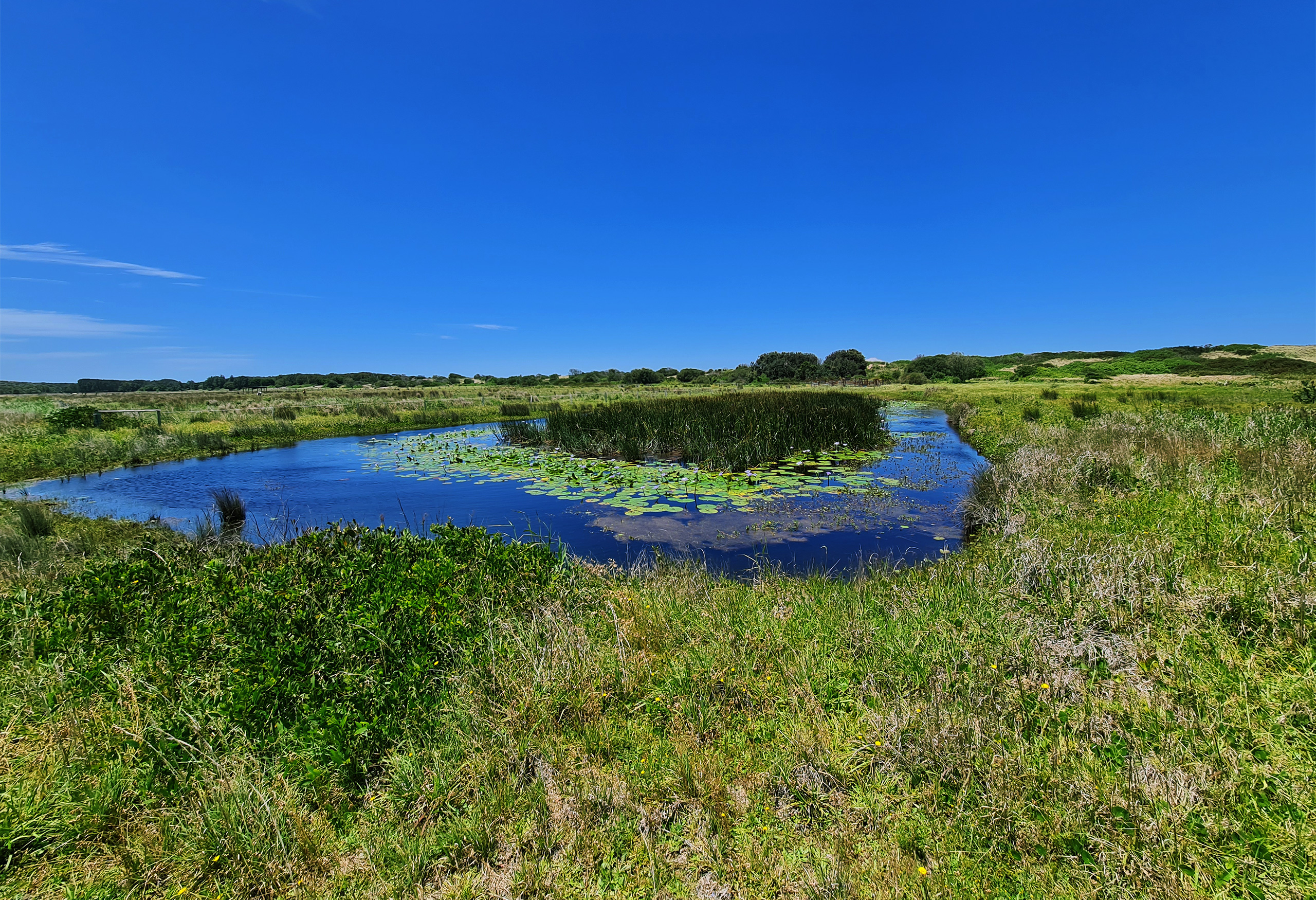 Melaleuca Seaside Retreat - Natural Spring Lake